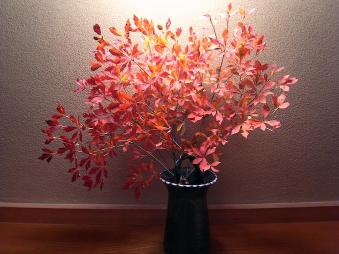 家のなかでも秋をたのしむ暮らし。