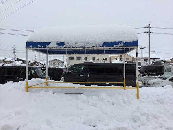 今年の雪は異常!雪で転んだり、駐車場で挟みうちにあったり。