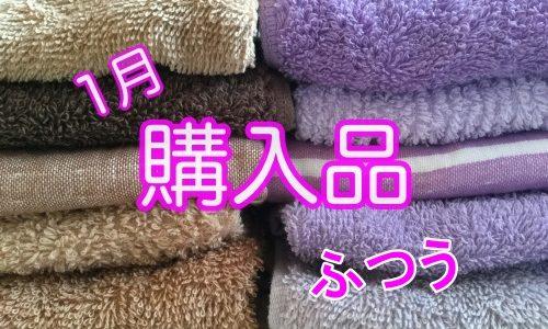 1月の購入品〜タオル、ブレンダー、日用品など〜普通です