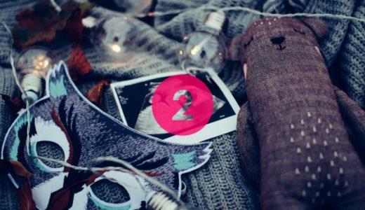 妊娠記録|妊娠初期2ヶ月、つわりがつらい、心拍確認